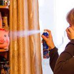 Средство от блох в квартире. Как эффективно бороться с паразитами?