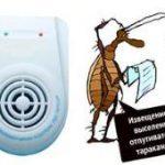 Ультразвуковые отпугиватели от тараканов. Советы и рекомендации