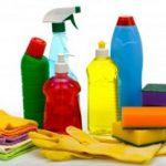 Народные средства против клопов: эффективность домашних средств
