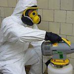 Профессиональная дезинсекция квартир от тараканов, преимущества вызова специалистов на дом