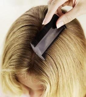 После процедуры следует тщательно вычесать волосы