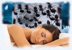 Сонники могут толковать данные сны по-разному