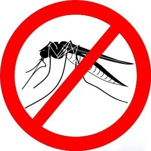 Чего не переносят комары