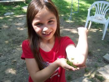 девочка прижимает траву к укушеному осой месту