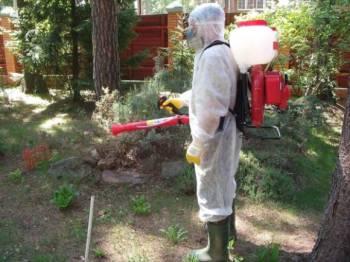 готов к борьбе с пчёлами