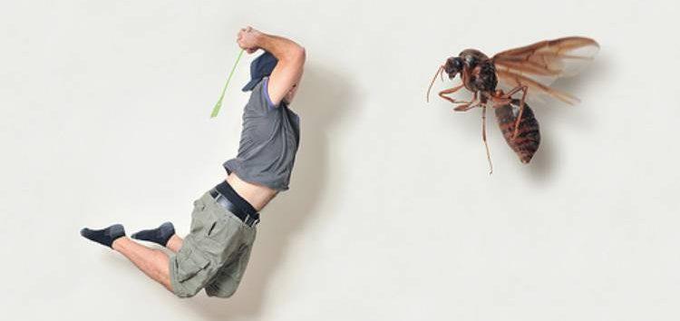 Мухобойка против насекомого