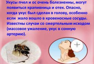 немного об укусах пчел и ос