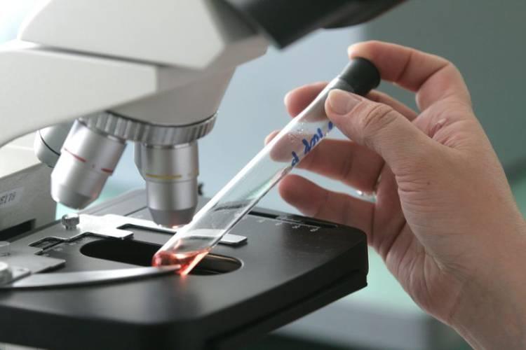 пробирка под микроскопом