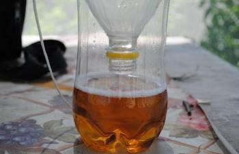 ловушка для ос из бластиковой бутылк